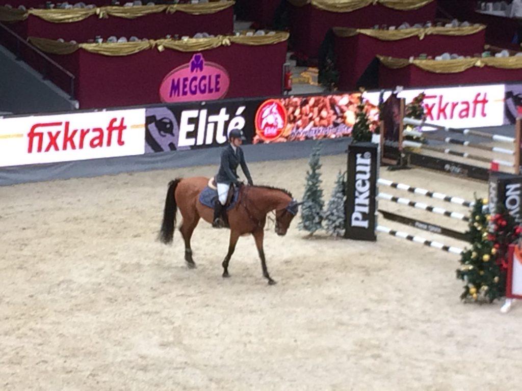 Amadeus Horse Indoors 1b Nms Nonntal